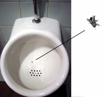 fly-urinal
